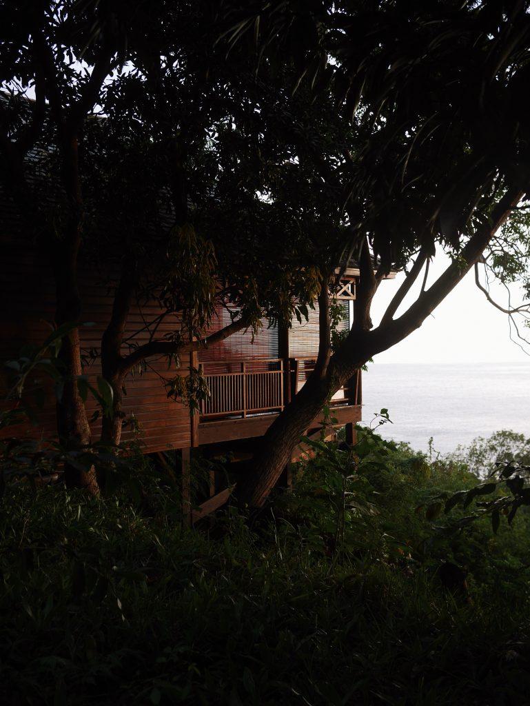 palmhotel_lodge