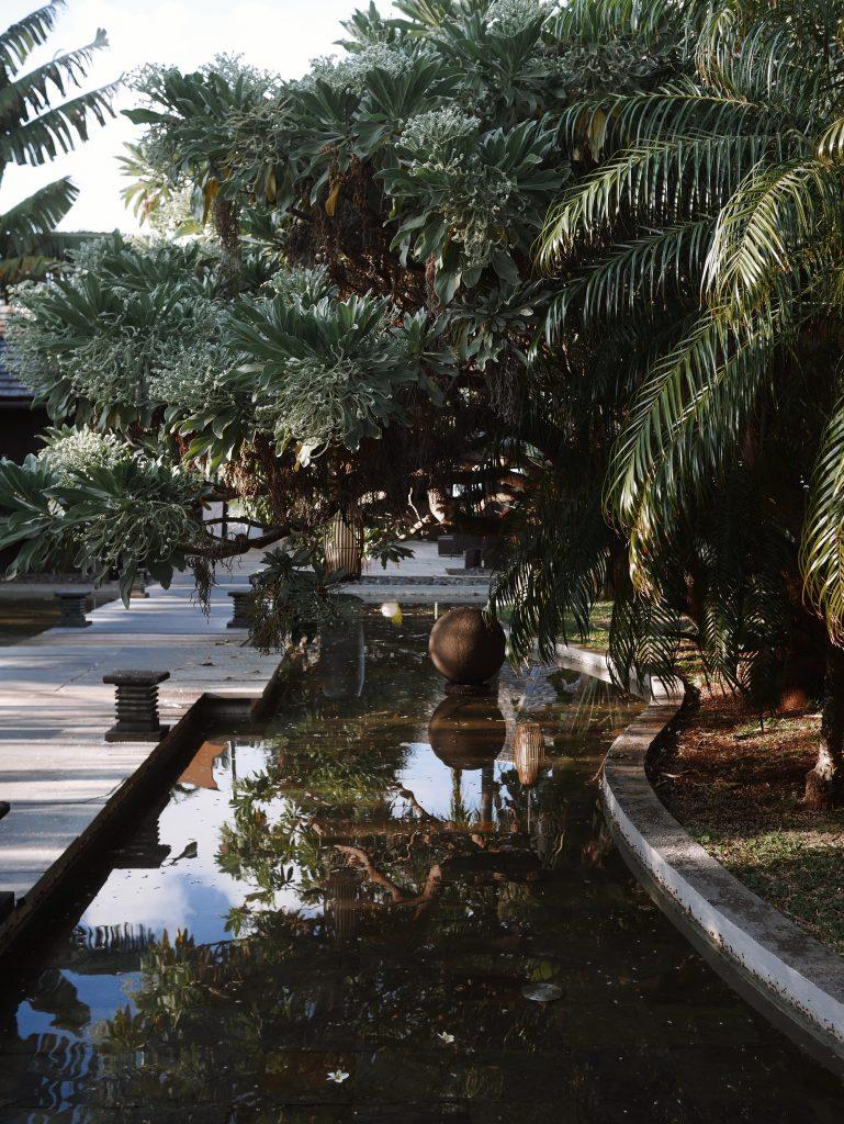 palmhotelandspa_jardin