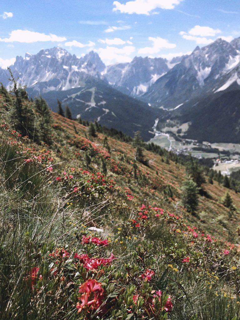 sud-du-tyrol-nature
