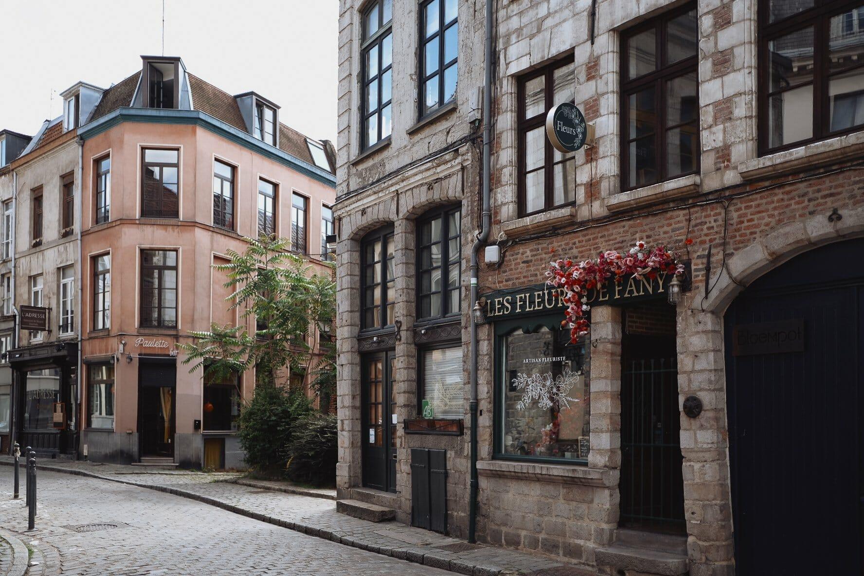 maisons dans la vieille ville de Lille
