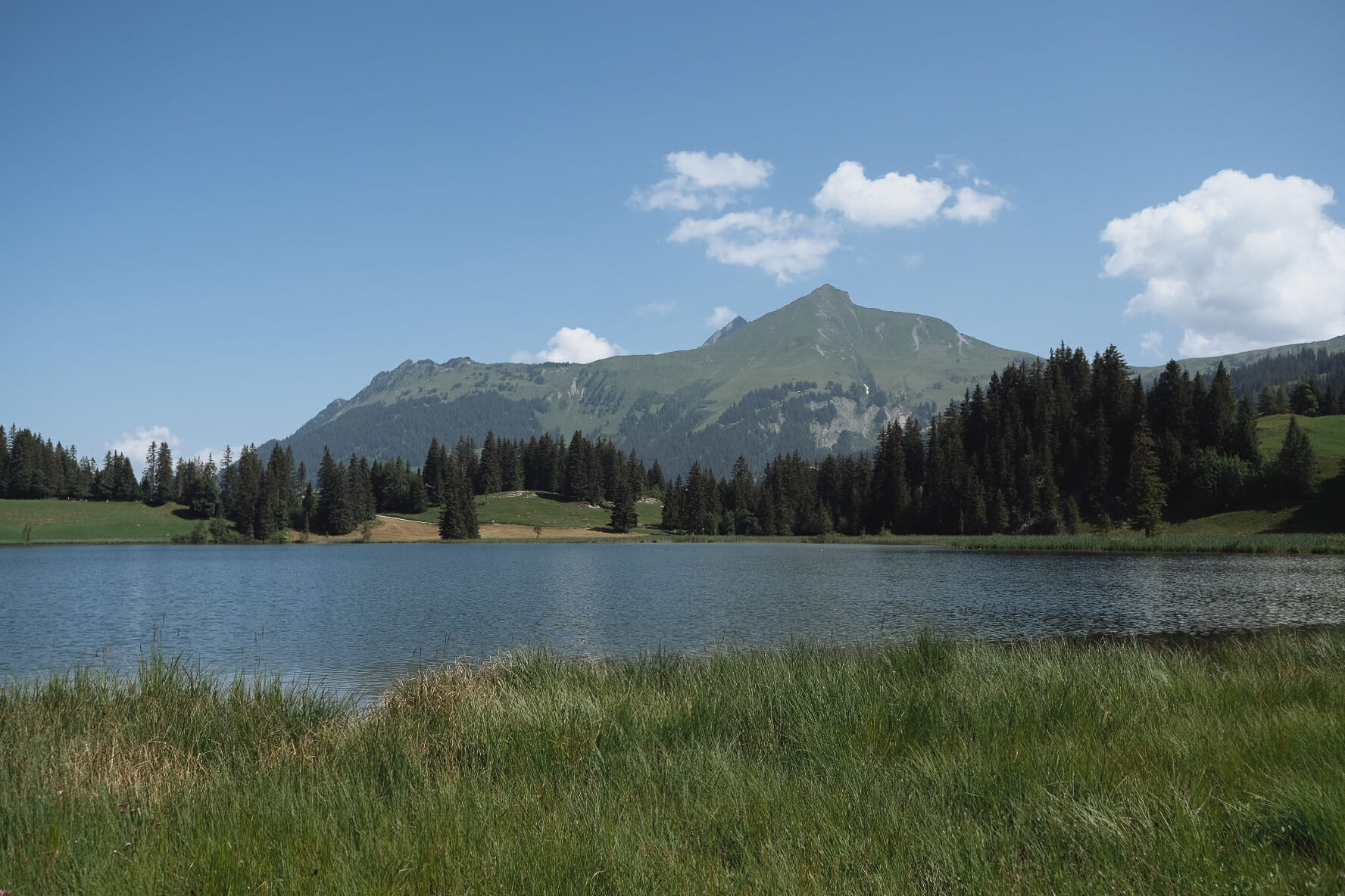 lac-de-lauenen-dans-la-region-de-gstaad